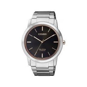 Citizen Eco-Drive Super Titanium AW2024-81E